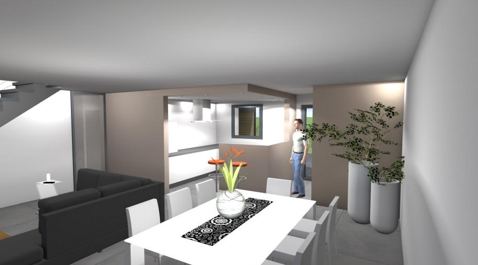 projet lf lf 1 2 vue architecte lise roturier rennes 35000. Black Bedroom Furniture Sets. Home Design Ideas
