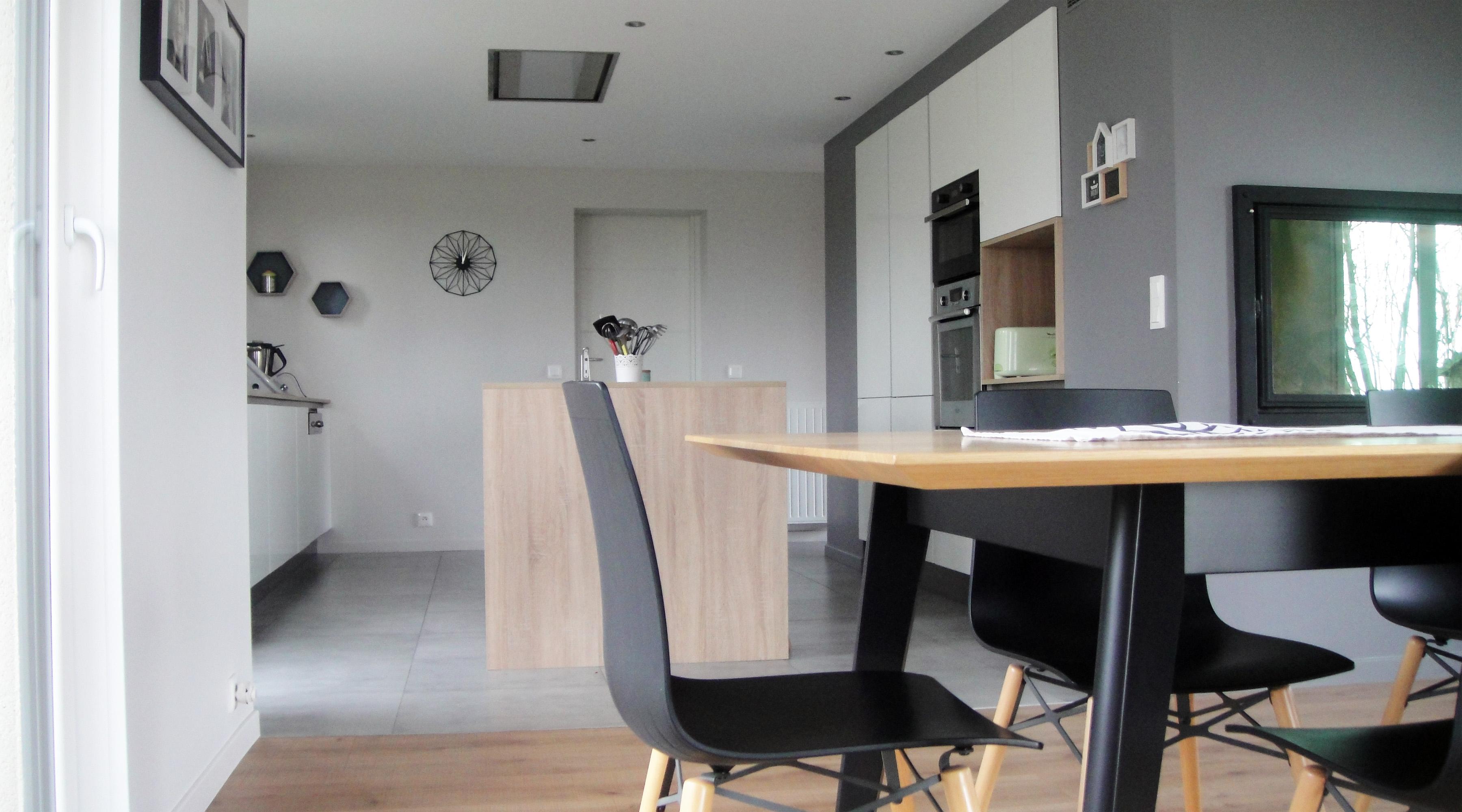 projet s s 1 2 vue architecte lise roturier rennes 35000. Black Bedroom Furniture Sets. Home Design Ideas